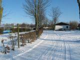 winter021